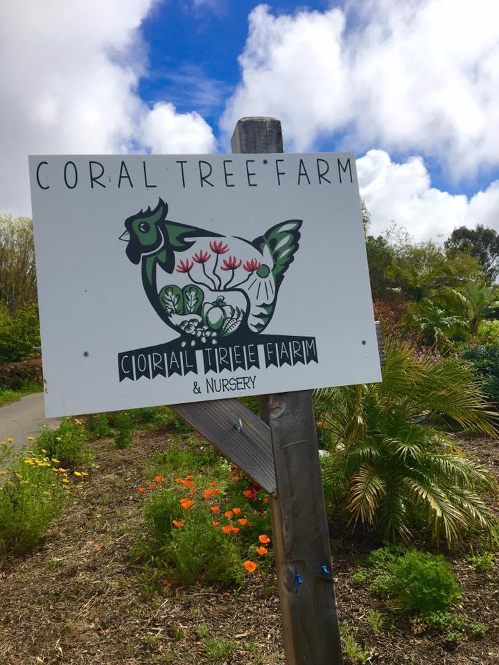 Coral Tree Farm in Encinitas