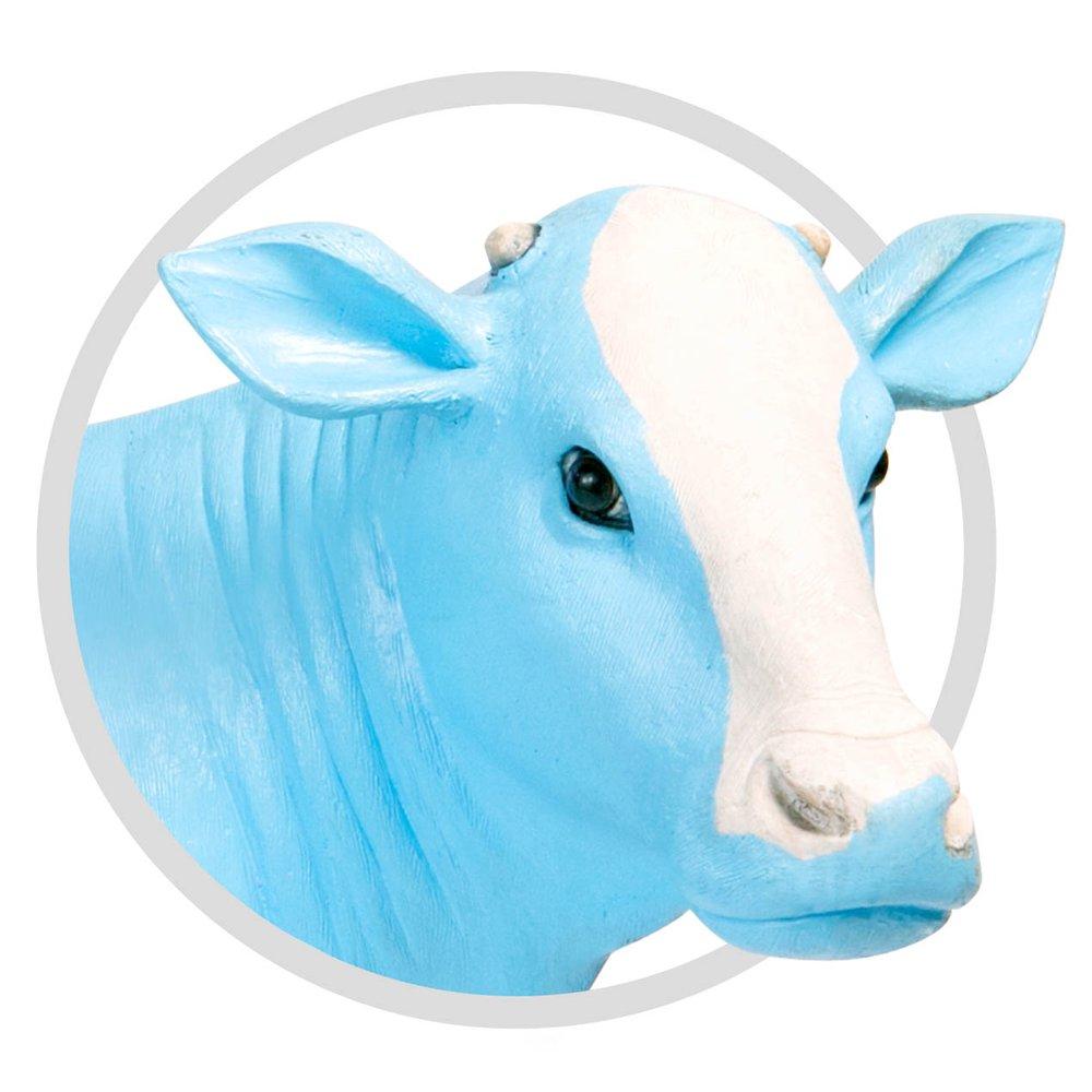 cow.jpeg