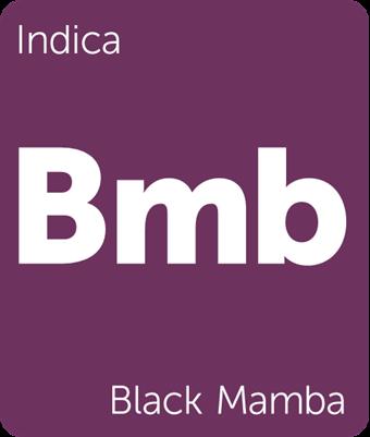 blackmamba.png