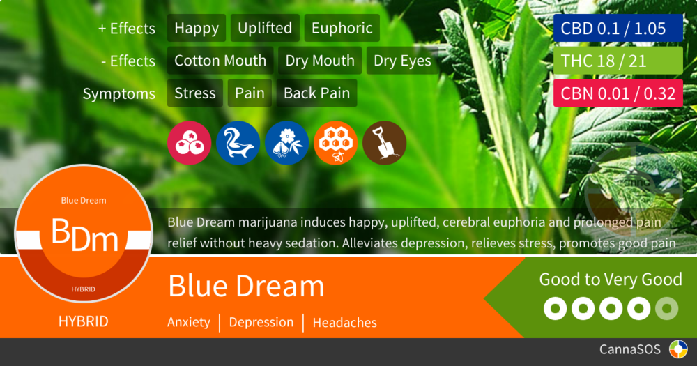 strain-blue-dream.png