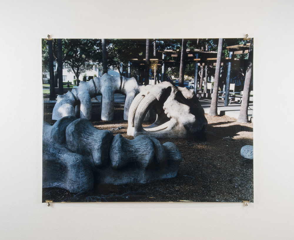 Playground,  50in x 62in, Chromogenic Print.