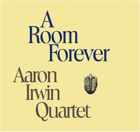 irwin_a_room_forever_cover.jpg