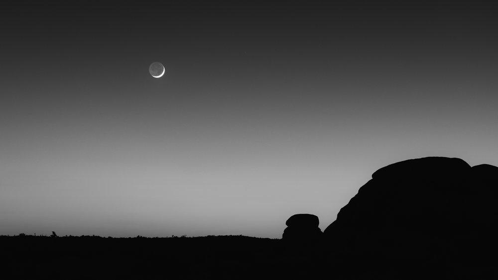 moon setting over joshua tree national park black and white photograph.jpg