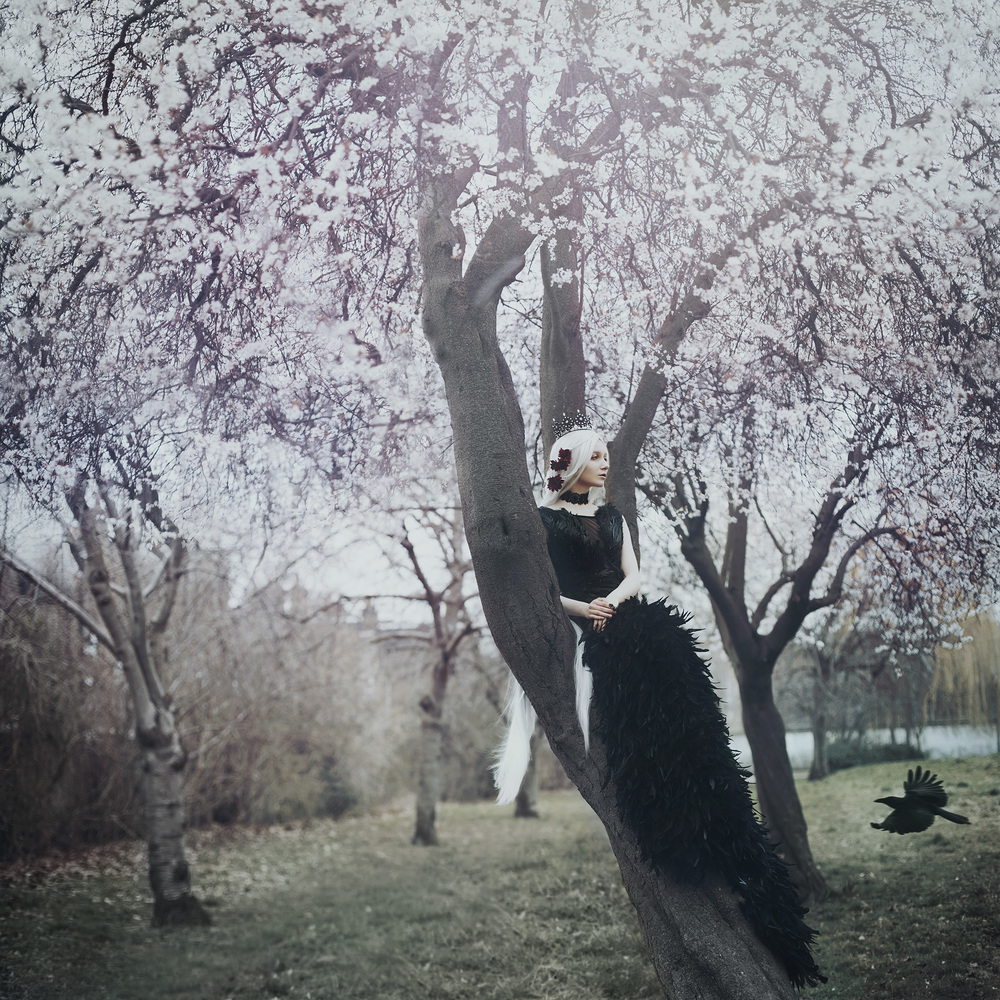 the crow queen.. by Bella Kotak