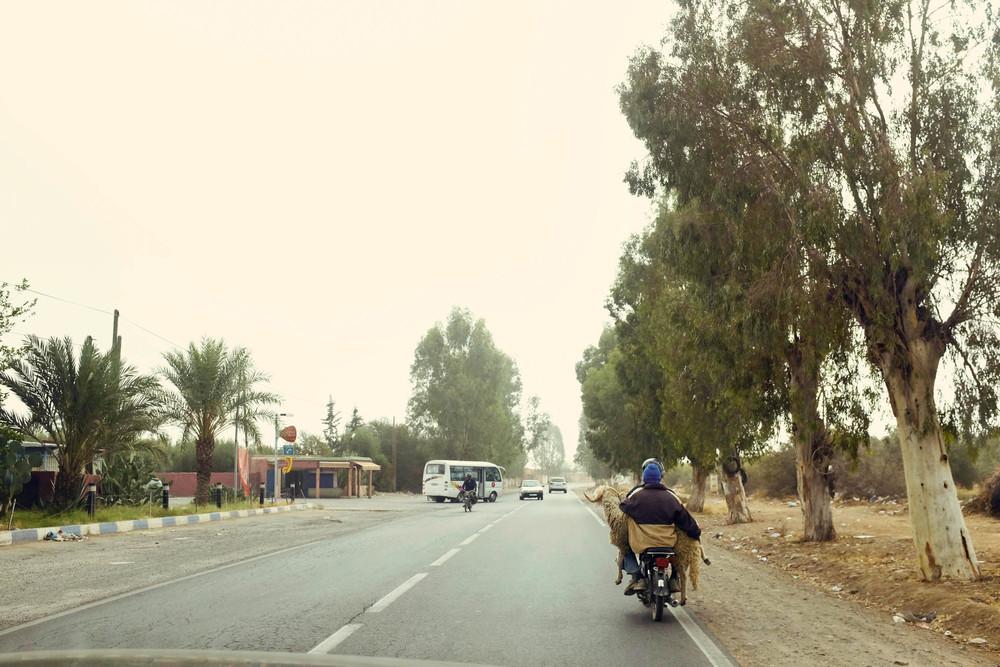 morocco (28 of 258).jpg