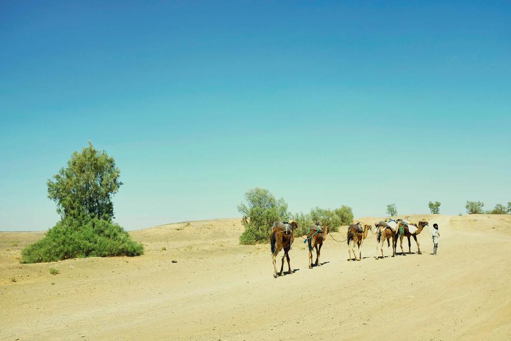 morocco (79 of 258).jpg