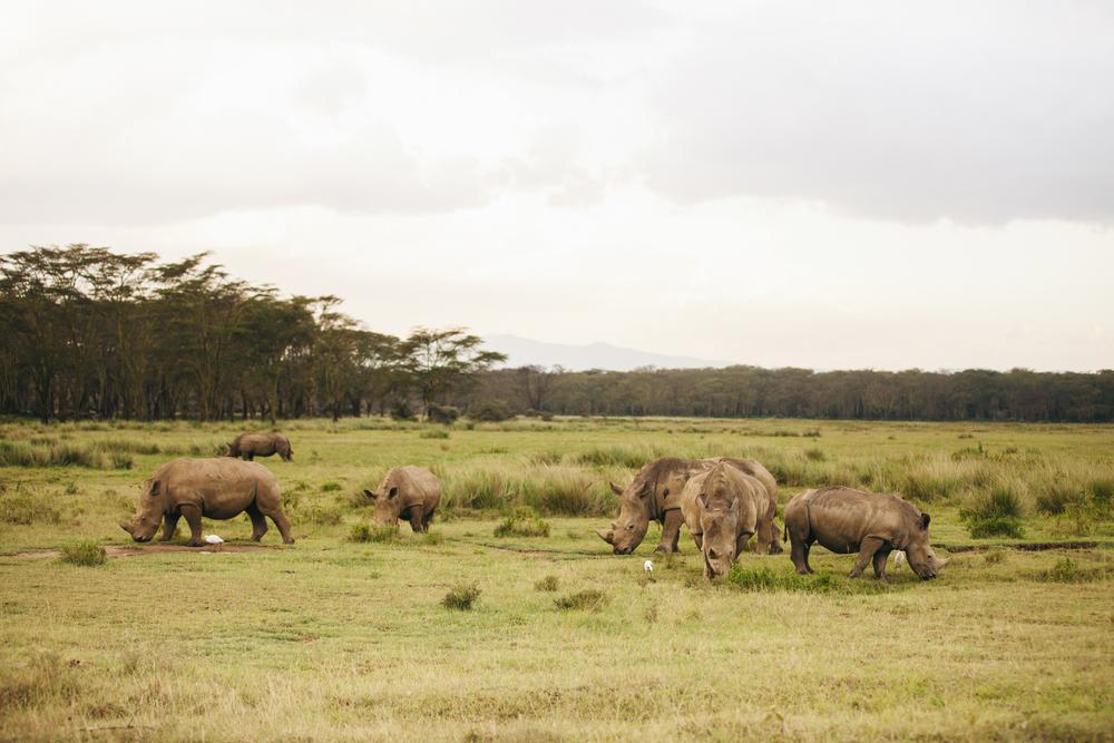 Kenya-41.jpg