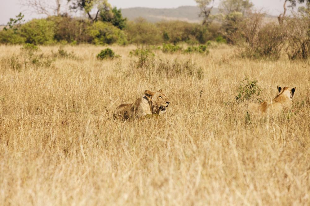Kenya-91.jpg