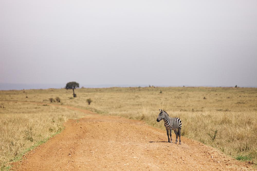 Kenya-119.jpg