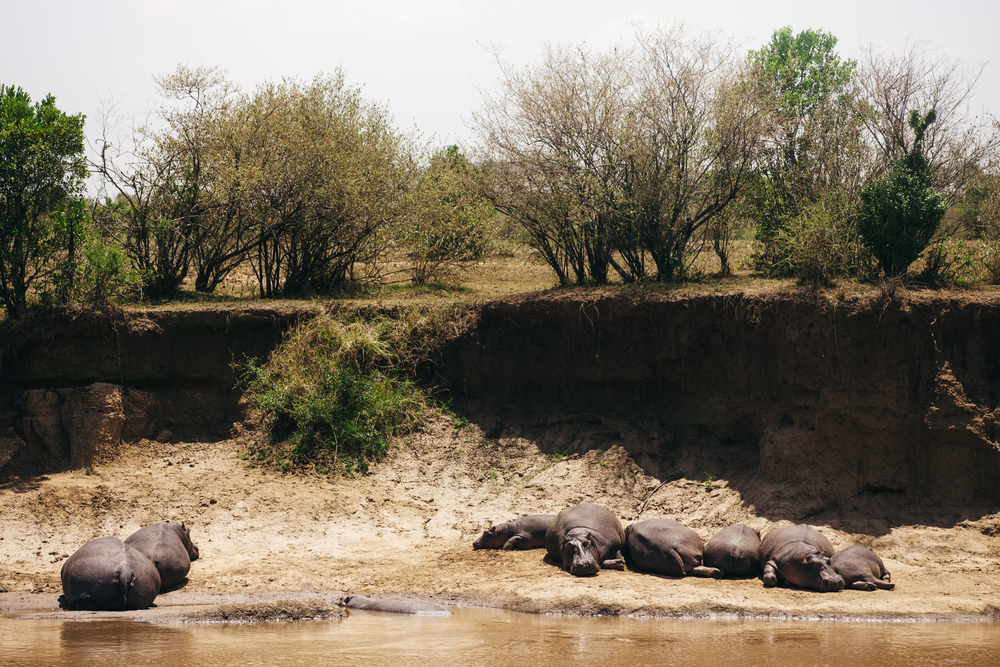 Kenya-126.jpg