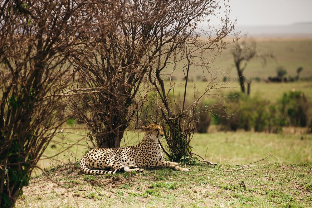 Kenya-145.jpg