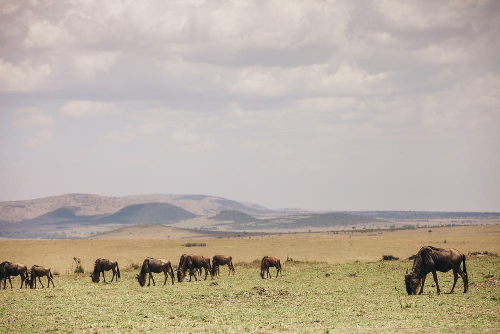 Kenya-148.jpg