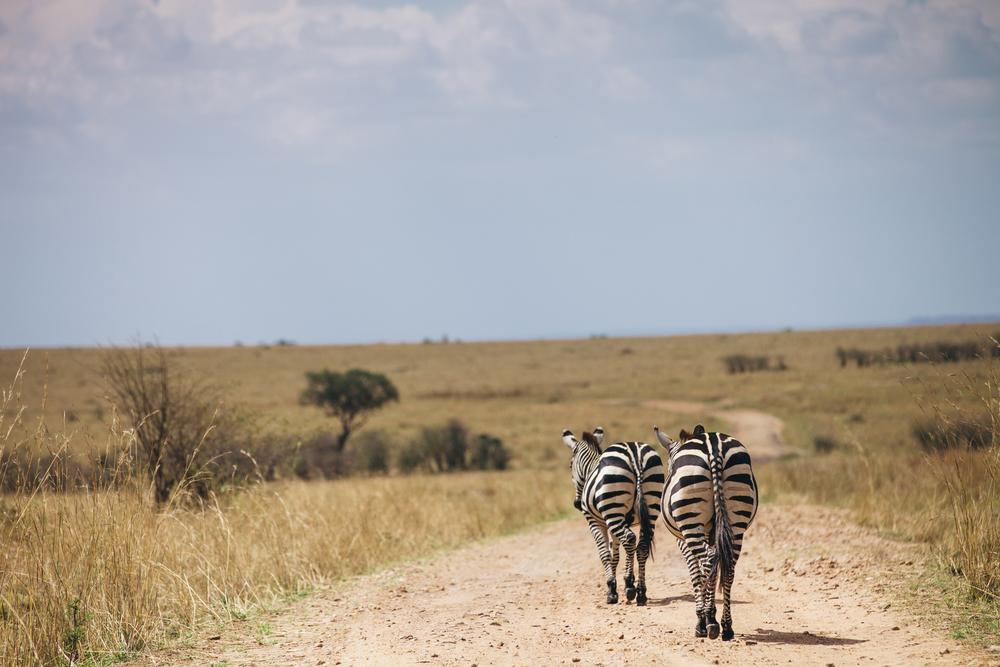 Kenya-153.jpg