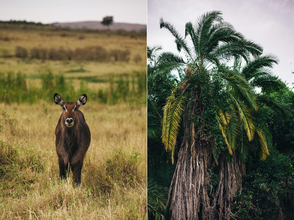 Kenya-156.jpg