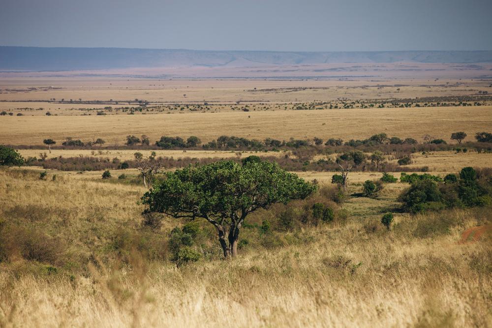 Kenya-162.jpg