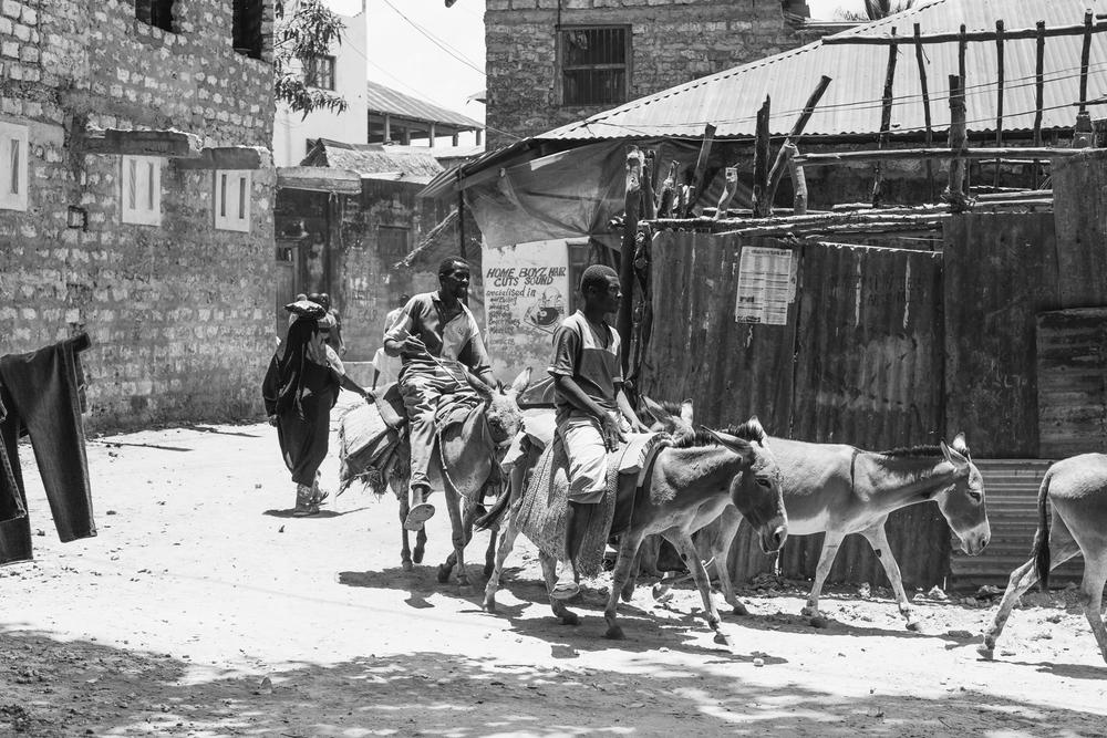 Kenya-246.jpg