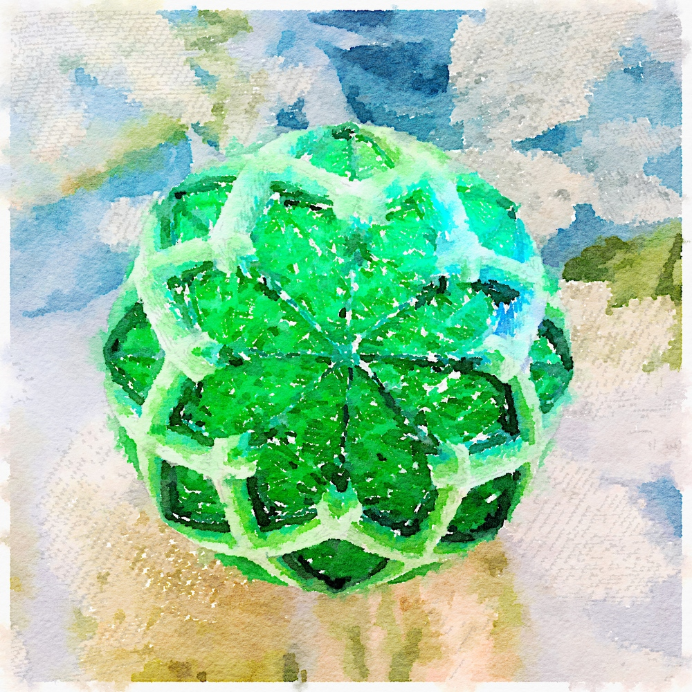 Green temari on floral background, my photo rendered in Waterlogue.