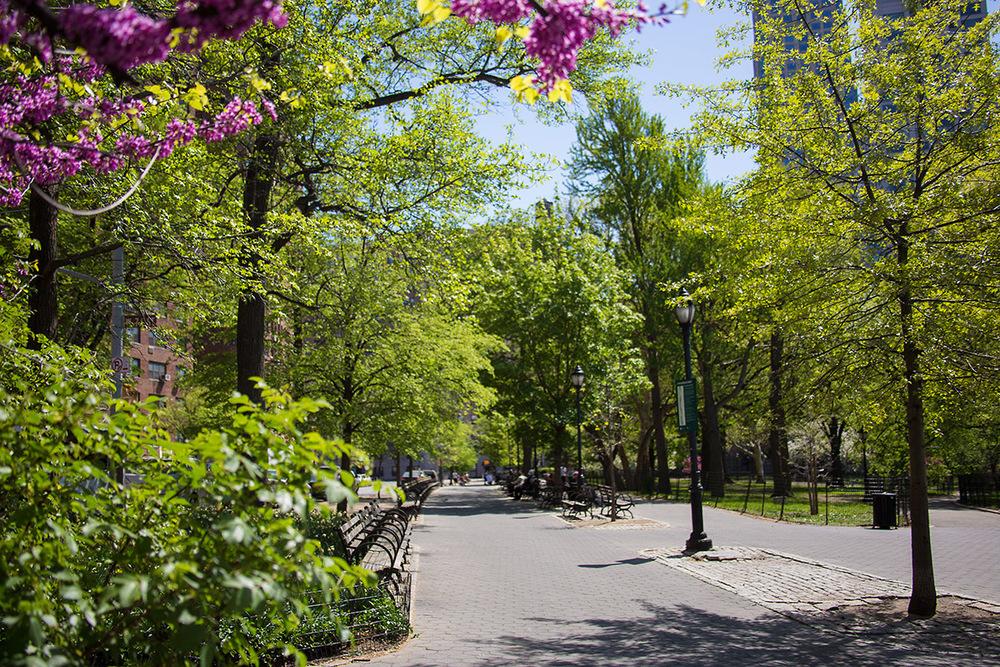 245_W_74_10CD__KAmbrosetti-Riverside Park2 (2).jpg