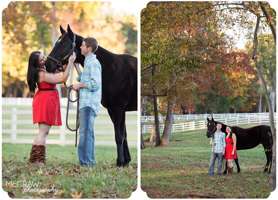 Charlotte Horse Portraits