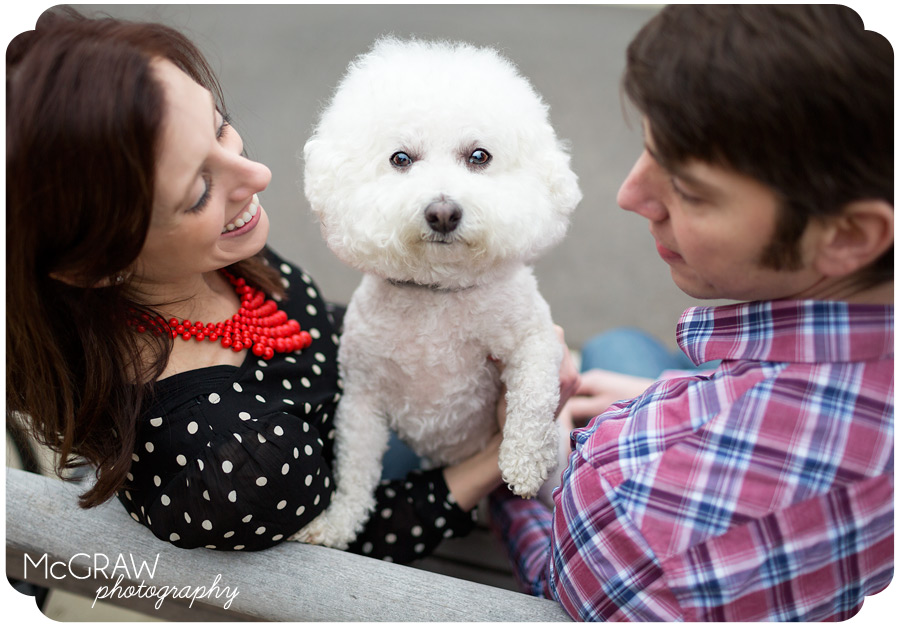 Charlotte NC Animal Photographer