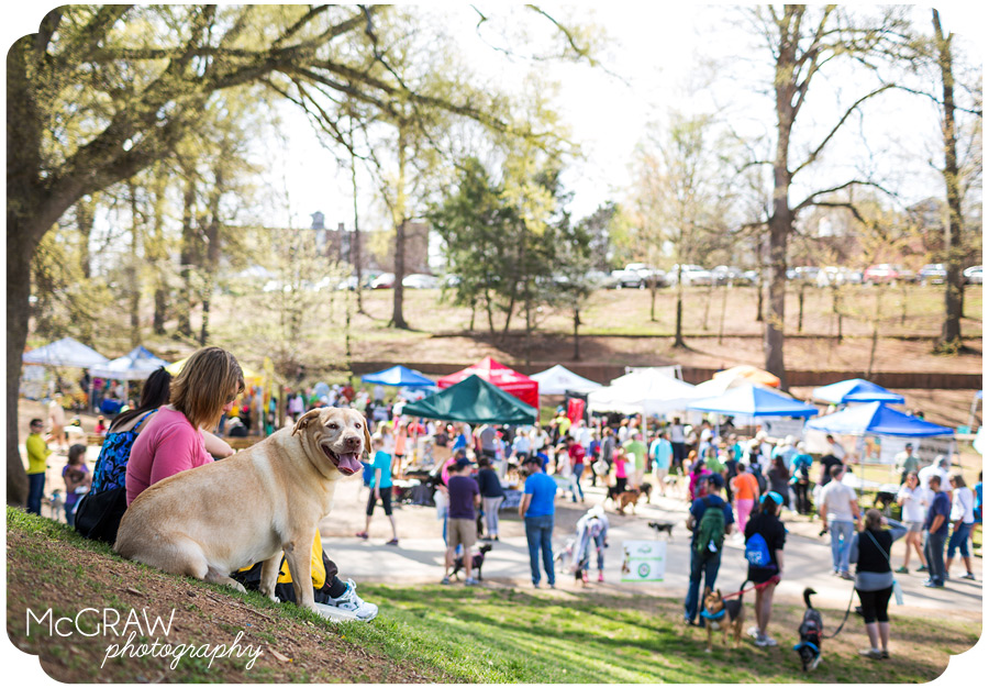 Humane Society of Charlotte dog walk