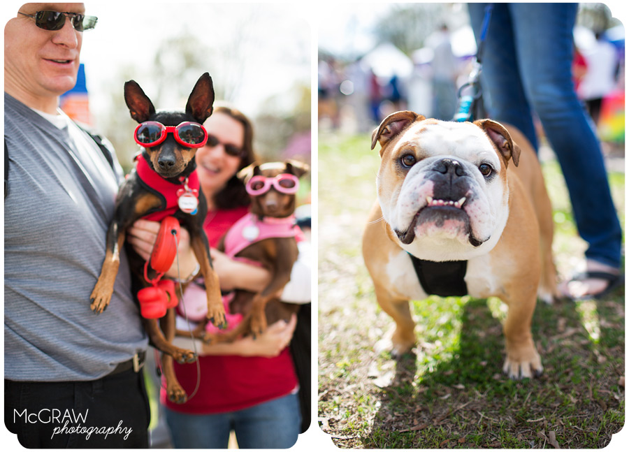 2014 Pet Palooza North Carolina