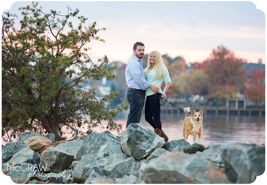 Lake Norman Dog Photographer
