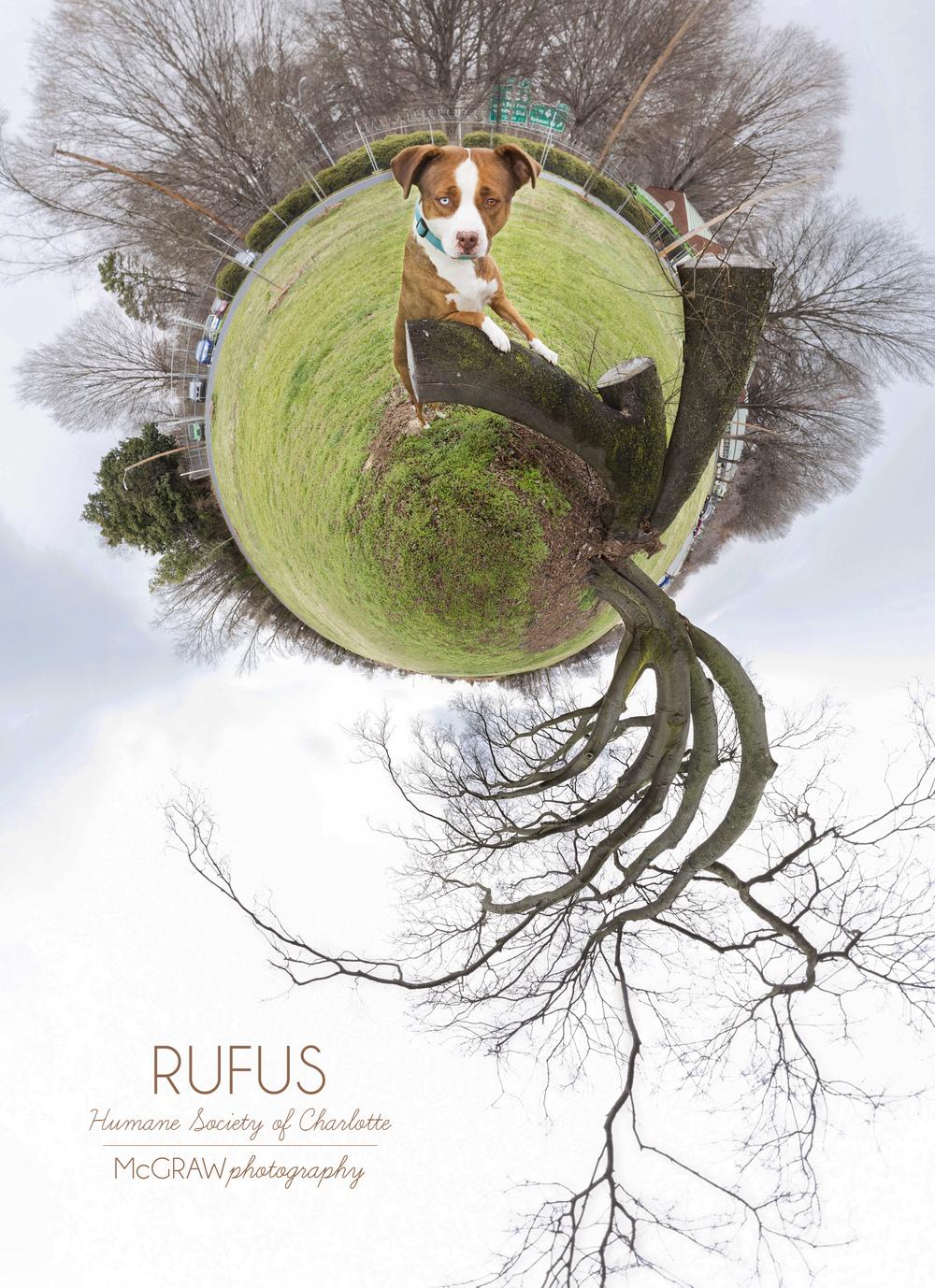 RufusWeeWorld.jpg