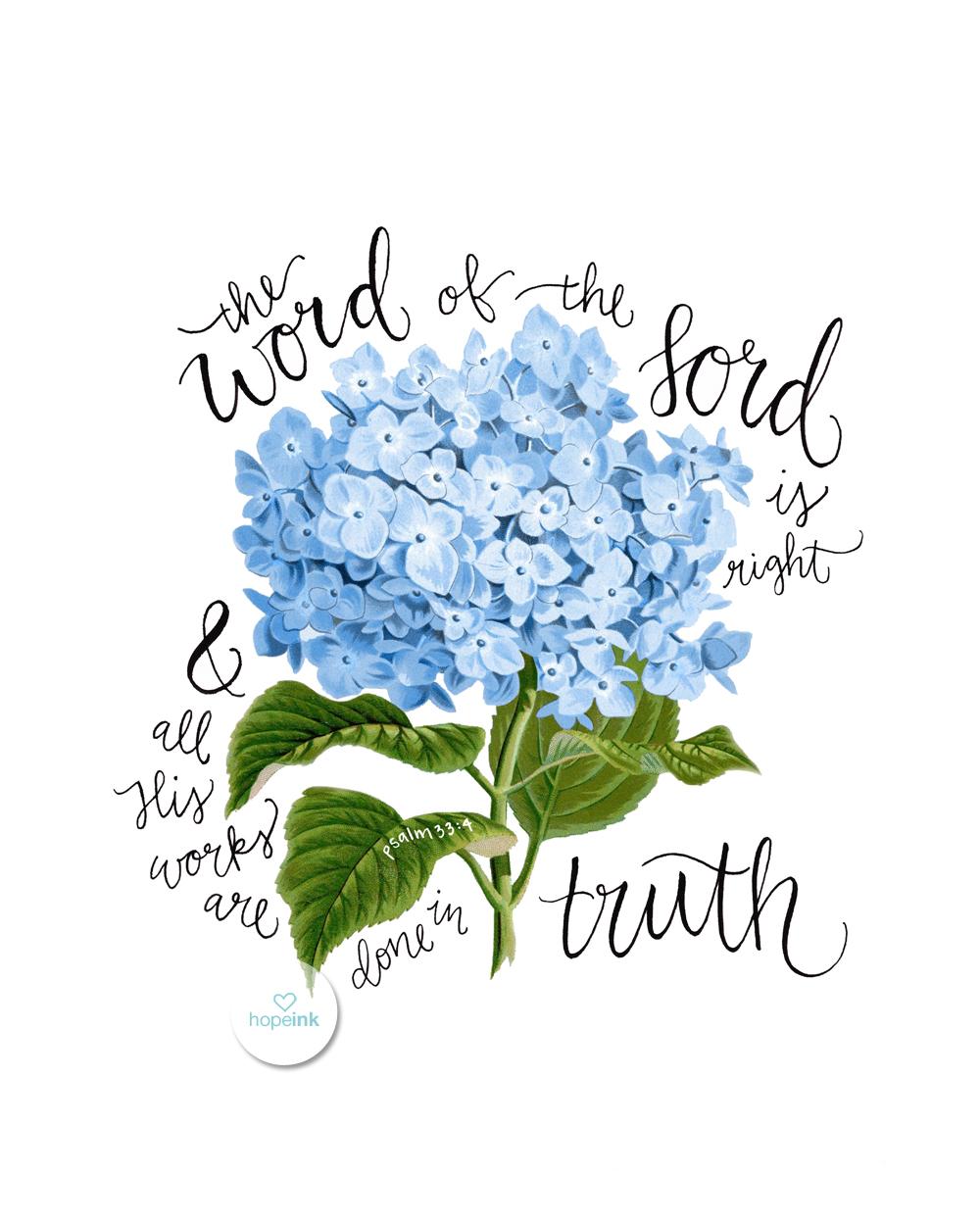 Scripture Art Hydrangeas Hope Ink.jpg