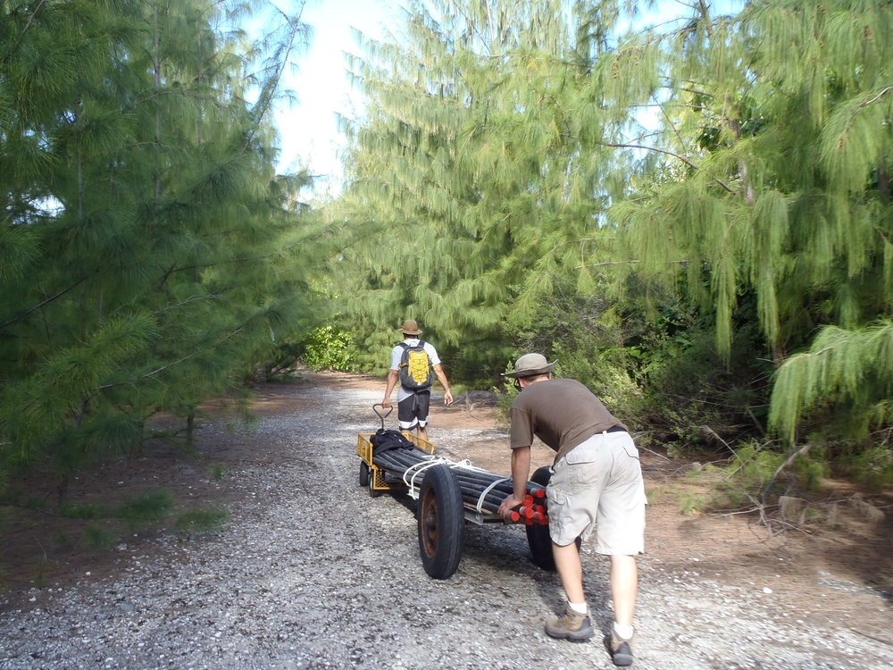 Moving equipment, Wake Atoll  -   Infrasound array installation - February 2015
