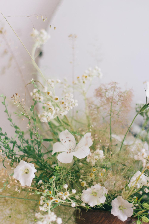 BFF_Studio-Smokeushgrass-3.jpg