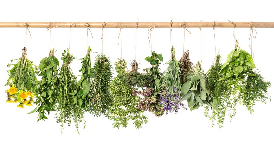 bigstock-Fresh-Herbs-Hanging-Isolated-O-74046136.jpg