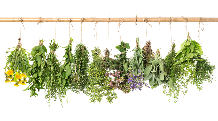 bigstock-Fresh-Herbs-Hanging-Isolated-O-74046136.jpg