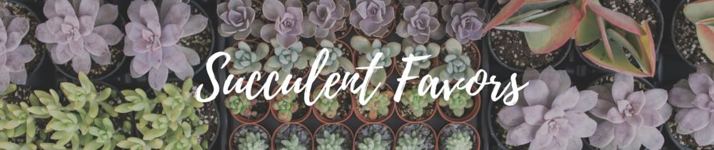 Succulent Favors.png