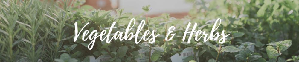 vegetables-herbs