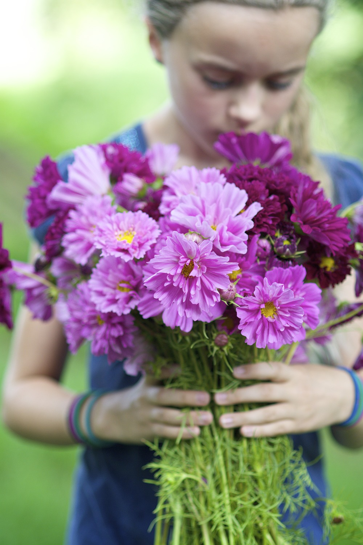 Chosen forbeauty &fragrance -