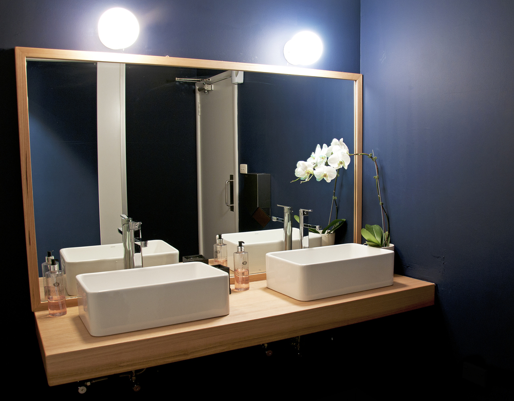 bathroom2_kirribilli_telegraphroad.jpg