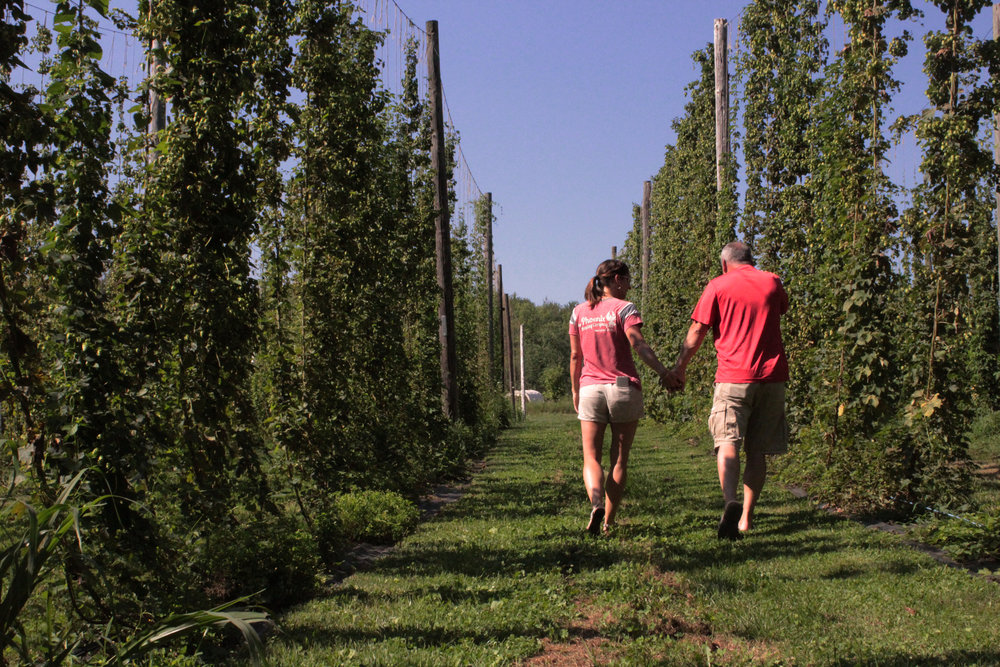 hop yard walk.jpg