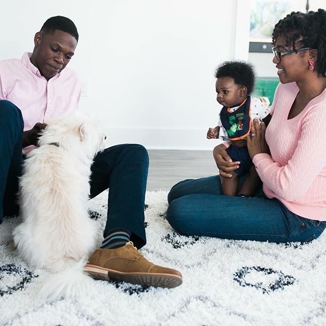 Are you worried about introducing your dog to the new baby? Your postpartum doulas can give you tips on how to make the transition as easy as possible!  #BatonRougeBirthServices #BatonRouge #Doula