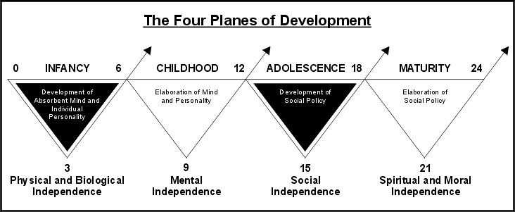 a look at the sensitive stage of development adolescence Developmental tasks of adolescence  to inability to perform tasks associated with the next period or stage in  to look upon girls as women.