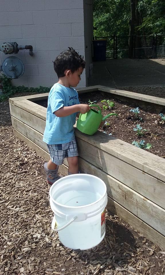 garden work.jpg