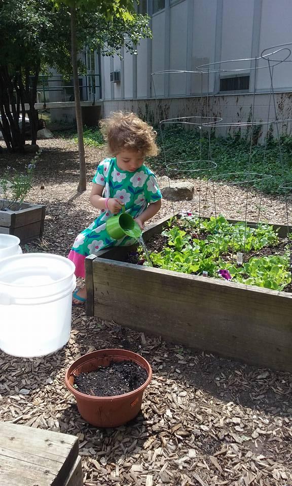 more garden work.jpg
