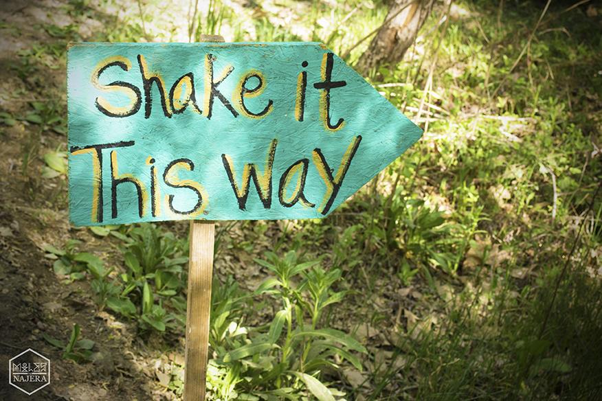 ShakeitSign.jpg
