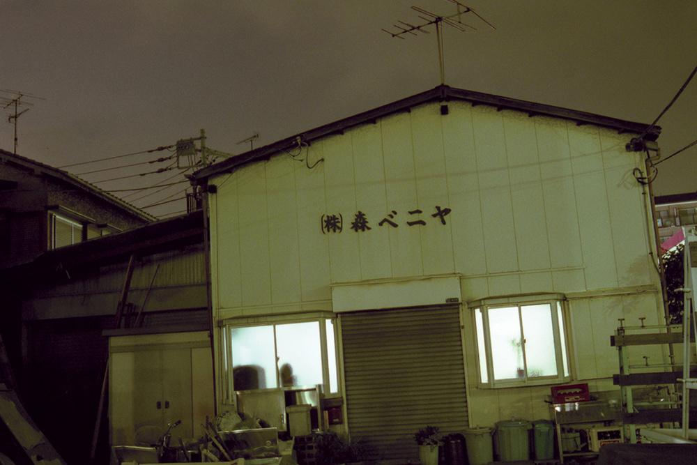 Myo-5.jpg