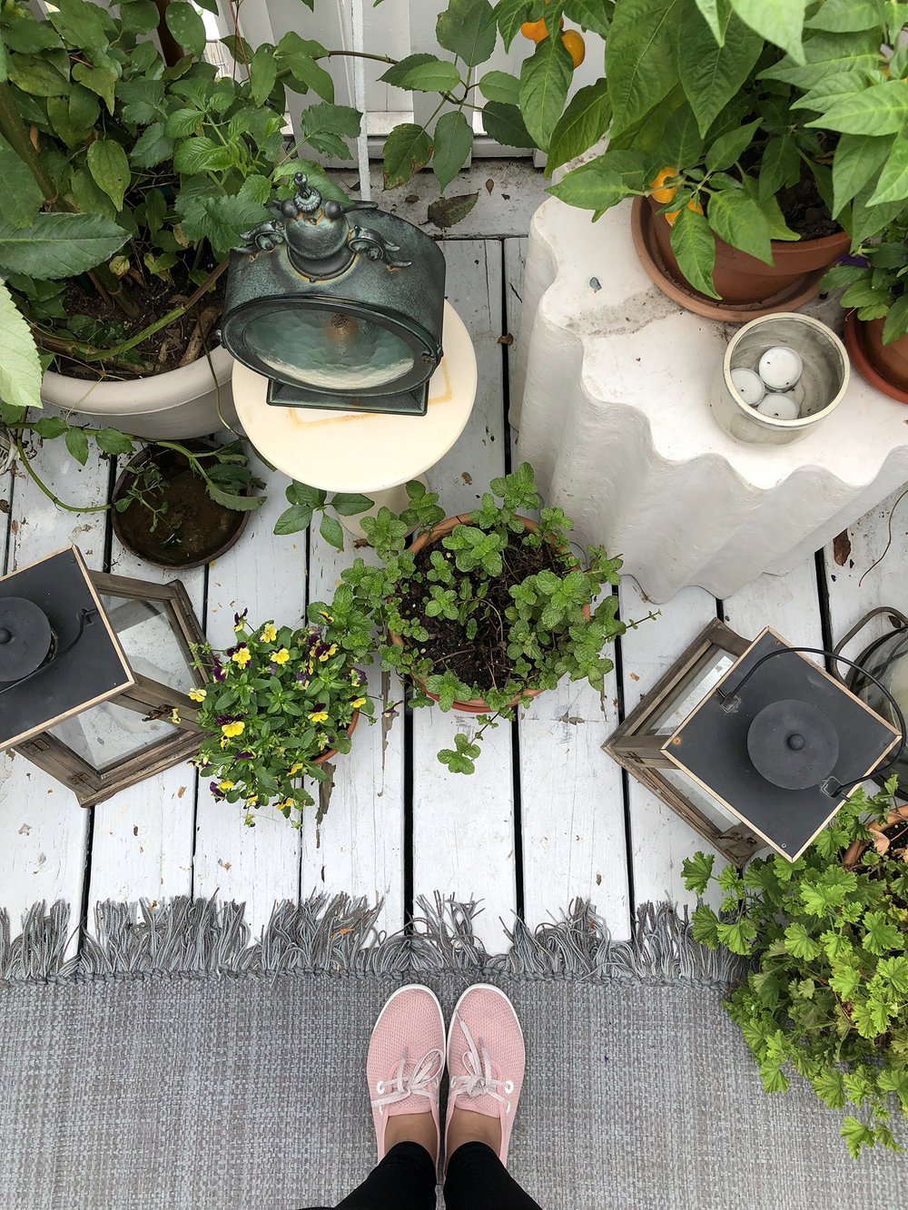 Katie's studio garden is a magical urban oasis
