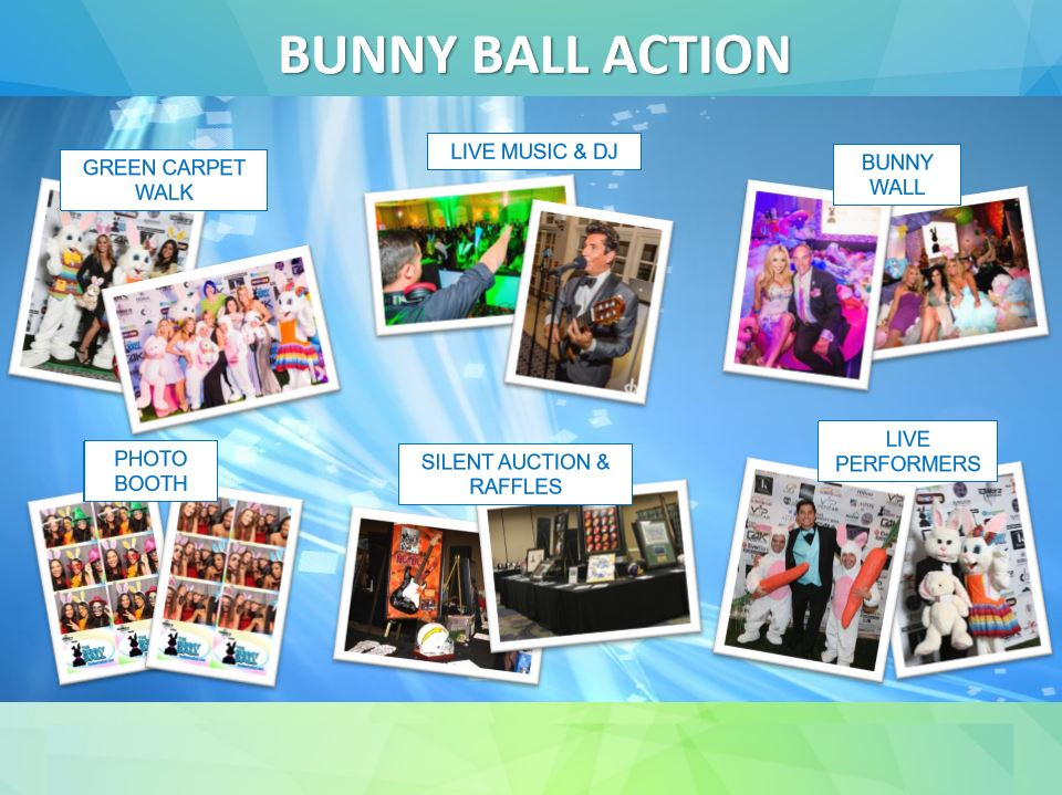 Bunny Ball Marketing Deck 7.JPG
