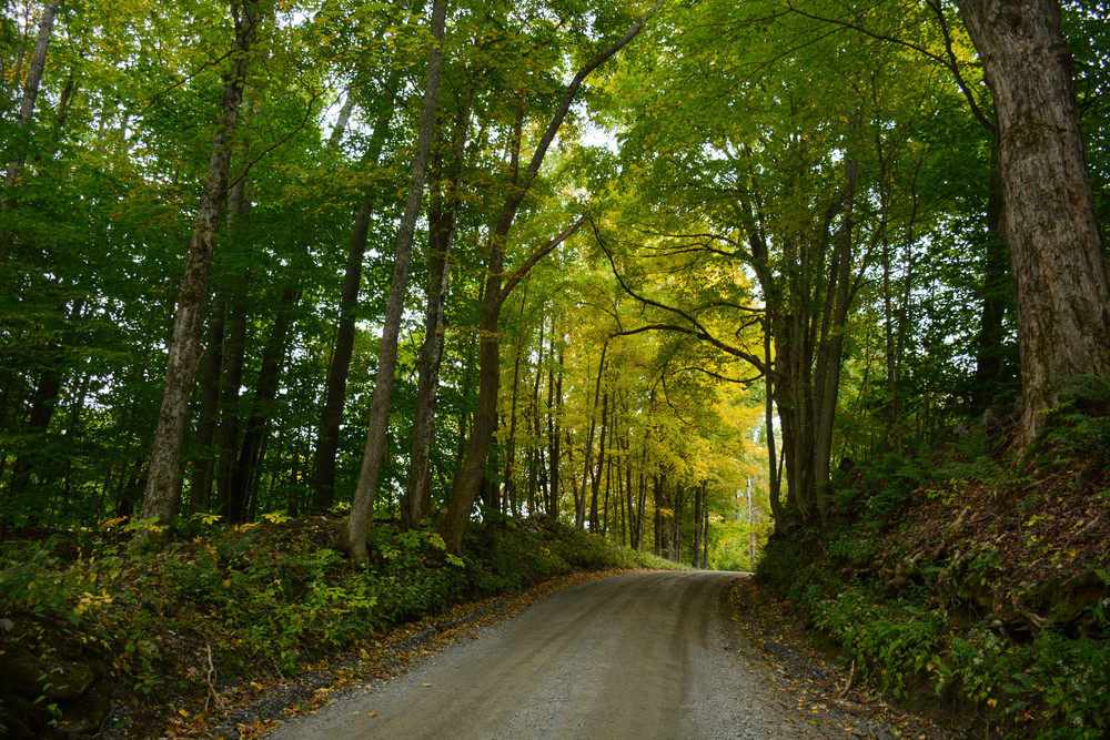 Vermont (11 of 34).jpg