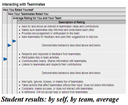 Example student view of peer and self-assessment results