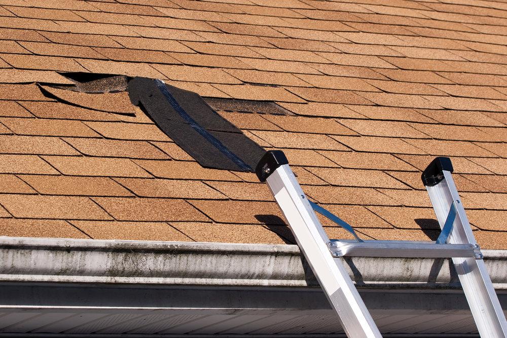 Wind Damage Roof.jpeg