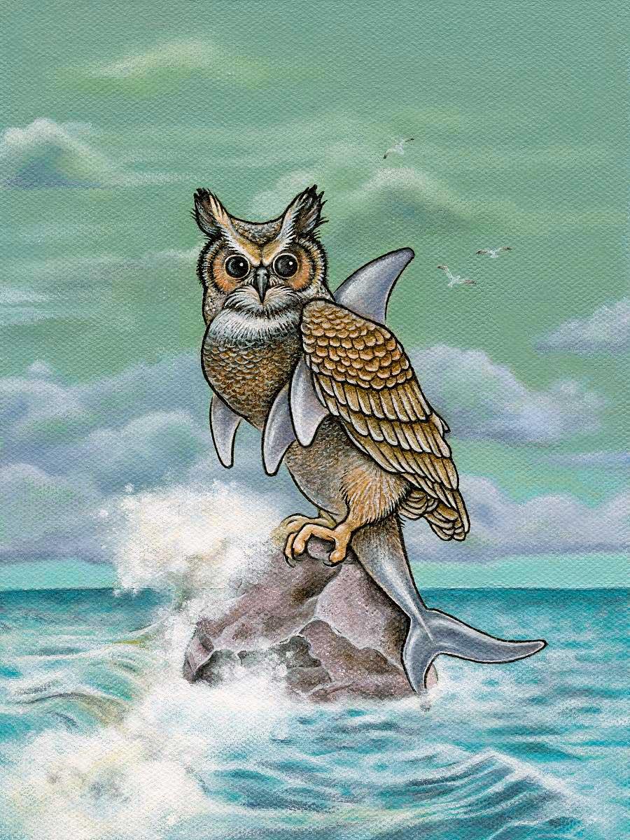 Owl Shark
